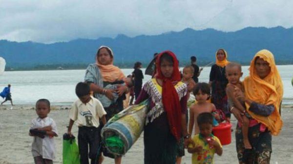 তামব্রু সীমান্ত দিয়ে রোহিঙ্গাদের বাংলাদেশে পাঠাচ্ছে বিজিপি